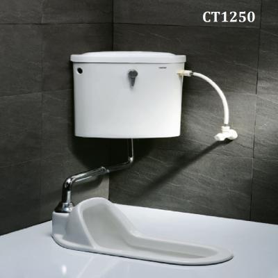 Bàn cầu xổm - CT1250