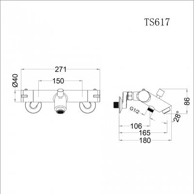 Sen nhiệt độ - TS617
